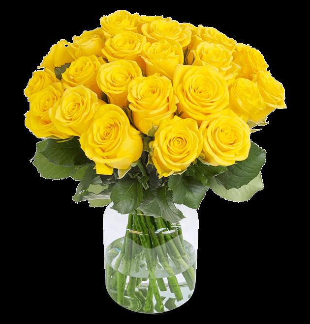 30 gelbe Rosen