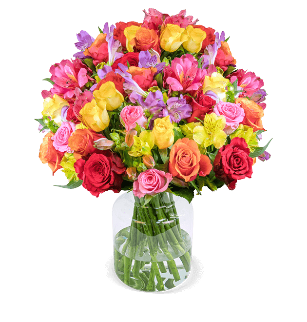 31 Rosenglück XXL mit über 120 Blüten